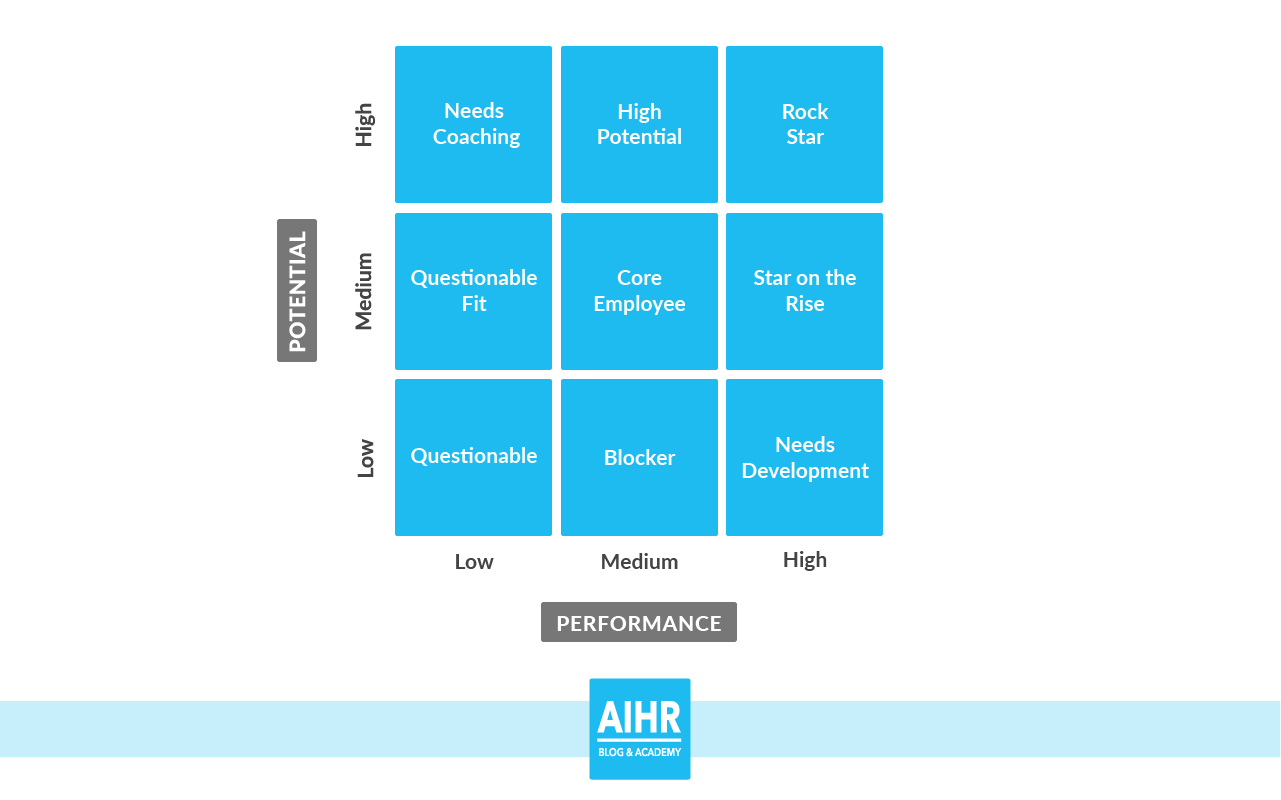 The 9-box grid based on the performance and potential of the employee