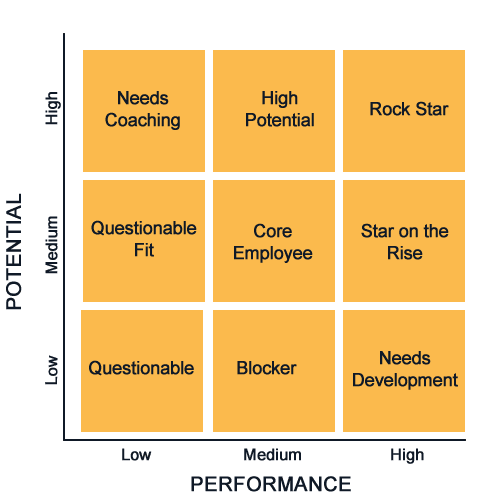 9 grid employee performance metric