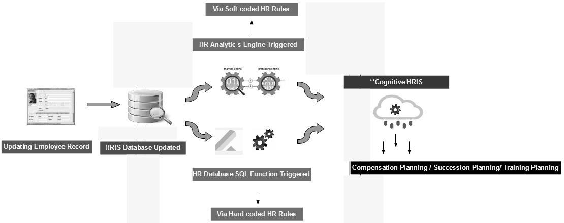 Human Resources Information System process view