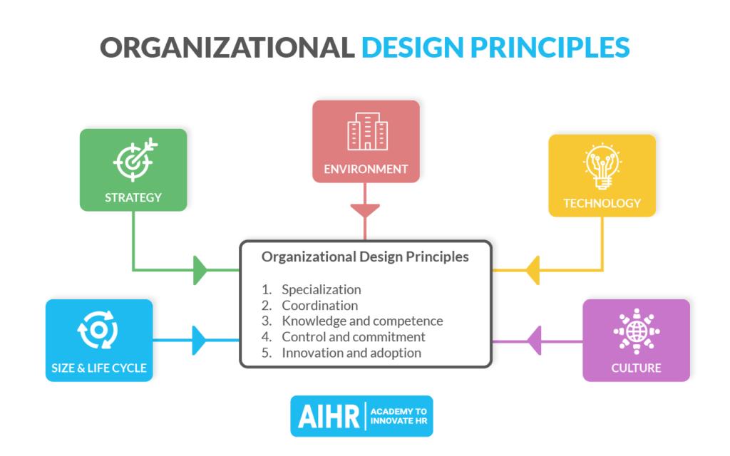 Organizational Design Principles