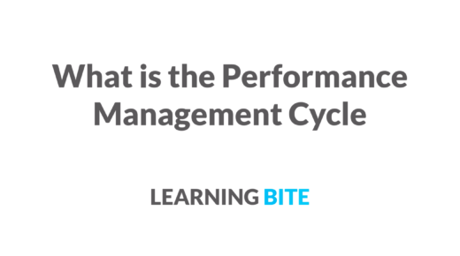 what is the performance management cycle