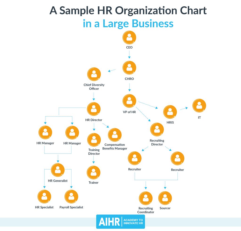 Sample HR Organization Chart: Large Business