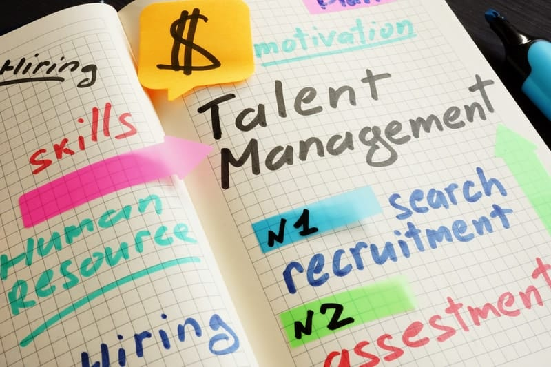 Talent Management involves a number of key HR processes