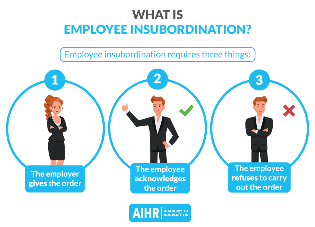 What is Employee Insubordination