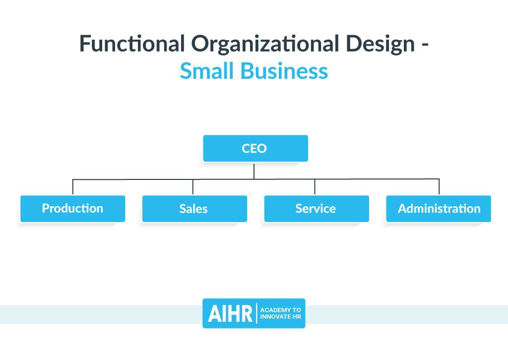 Functional Organizational Design - Small Business